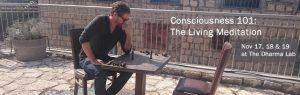 Consciousness 101: The Living Meditation